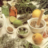 Colesterol (Plantas Medicinais que Ajudam)