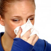 Gripe (Remédios Caseiros)