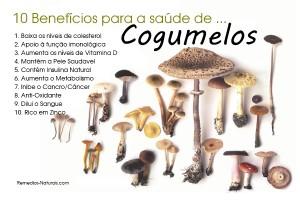 cogumelos-saude
